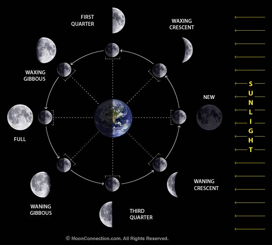 Moon phases diagram.jpg