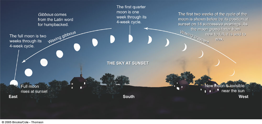 Lunar Phases at Sunset.jpg